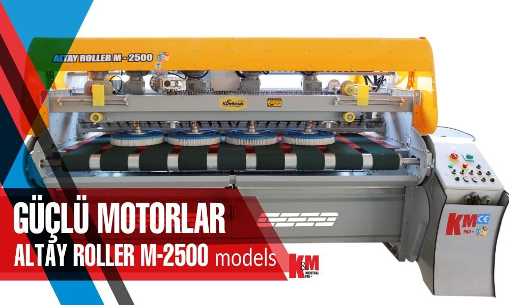 Tam Otomatik Halı Yıkama Makinası ALTAY ROLLER  M 2500